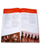Partnership Opportunities Brochure